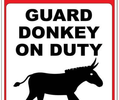 Guard Donkeys